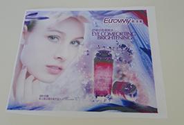 Դրոշ Կպչուն պիտակներ `տպագիր ըստ 1.6 մ (5 ֆունտ) Էկո վճարունակ տպիչ WER-ES160 4