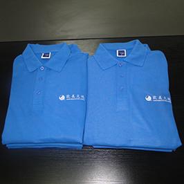 Polo shirt- ի կողմից ընտրված տպագրական նմուշը, A3- ի T-shirt տպիչով WER-E2000T
